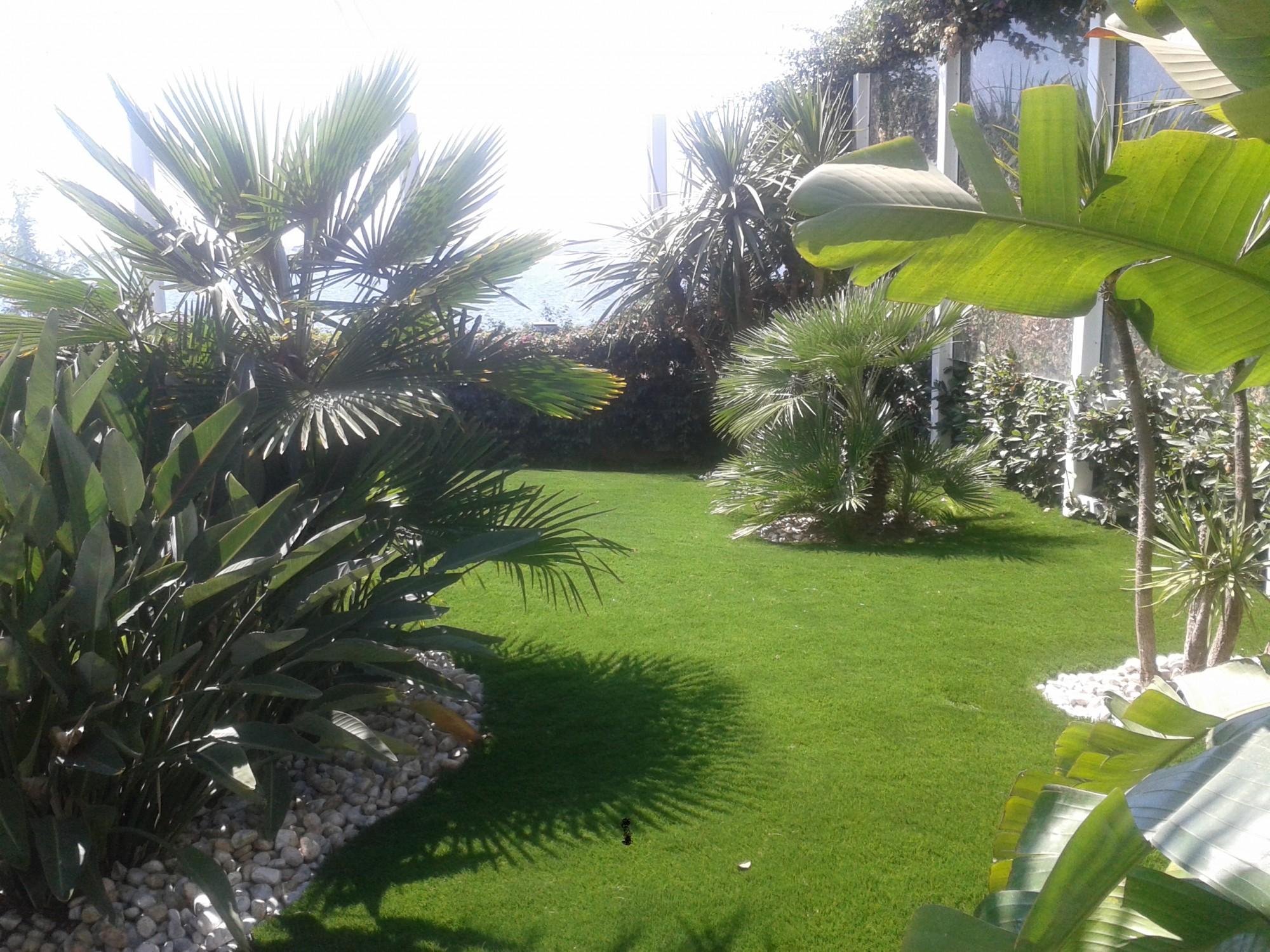 Poseur gazon synth tique gazon et pelouse synth tiques marseille univers gazons for Ecran de jardin synthetique