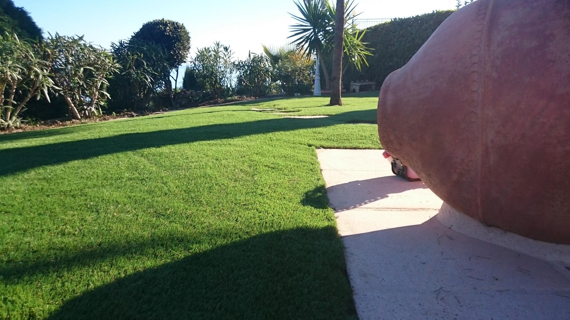 100 conseils de pose de gazon que choisir entre le gazon naturel et le - Poser une pelouse synthetique ...