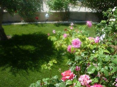 Am nagement d 39 un jardin st raphael gazon et pelouse for Amenagement jardin 66