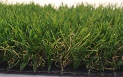 Gazon synth�tique Garden 32 mm